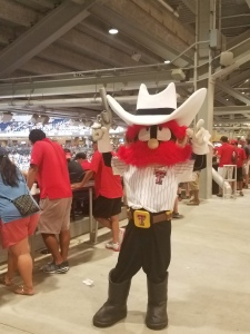 Raider Red from Texas Tech.
